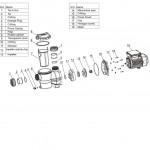 Насос AquaViva LX SMP015M 4 м3/ч (0,25НР, 220В) с префильтром