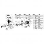 Насос Aquaviva LX SWPA400-I (220В, 33 м3/ч, 4HP) с префильтром